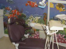 kid friendly dental , Dr. Shiva Roghani 3